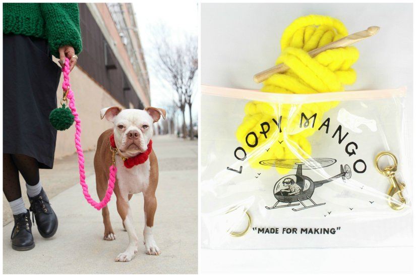 dog leash kit