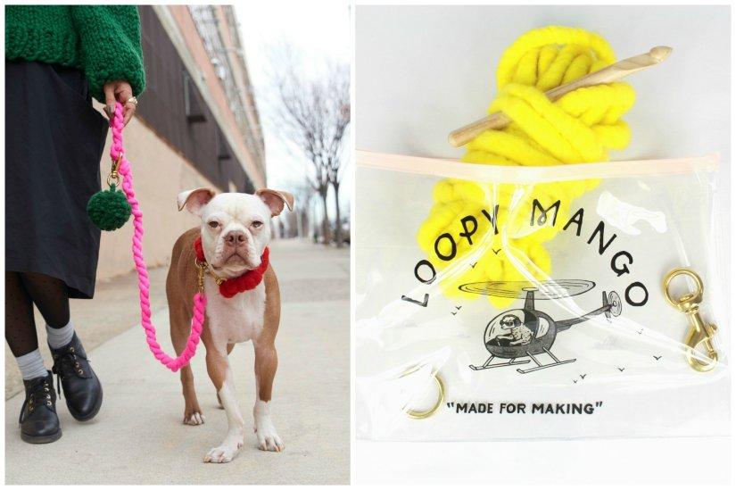dog leash kit